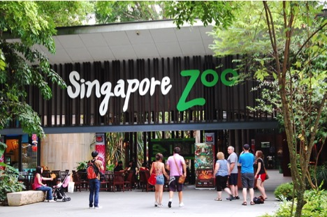 10 Must Visit Places In Singapore You Should Visit At Least One Time In Life_9