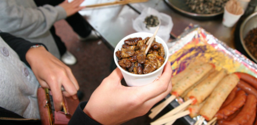 Top 10 Weirdest Dishes The Foreign Tourists Have Ever Tried In Asia_a6