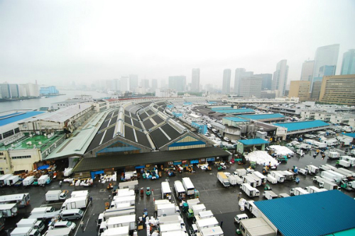 fresh-seafood-in-the-world-biggest-fish-market-1