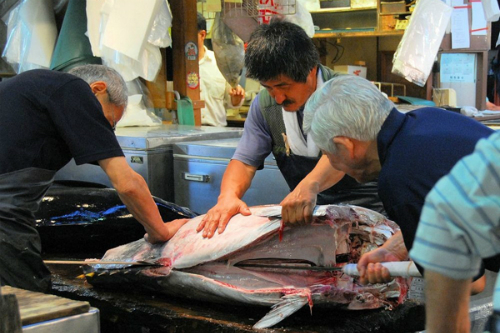 fresh-seafood-in-the-world-biggest-fish-market-7